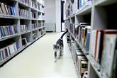 Paşa İsimli Kedi Kütüphanenin Maskotu Oldu