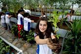 Bağcılar'da çocuklar bitkilerle arkadaş oldular