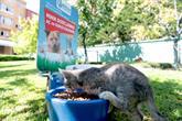 Sokak Hayvanları İçin Su Ve Mama Hizmeti